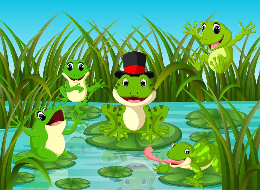 primavera ranas